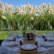 bodas y eventos especiales